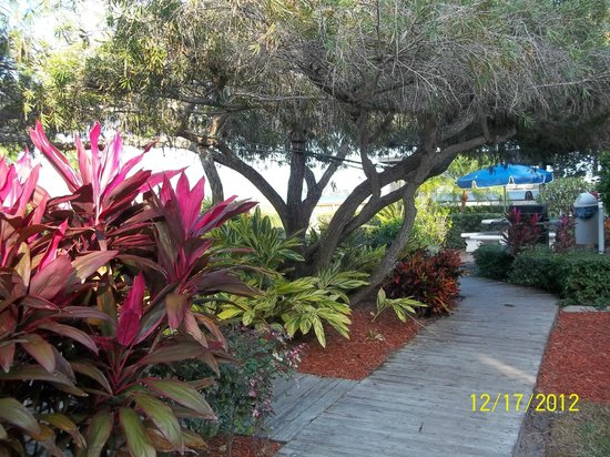 Smuggler's Cove Resort: Tropical Gardens with family areas for outdoor grilling and group shelter!