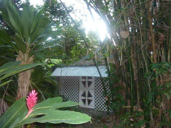 Chippewa Village: Little Cottage