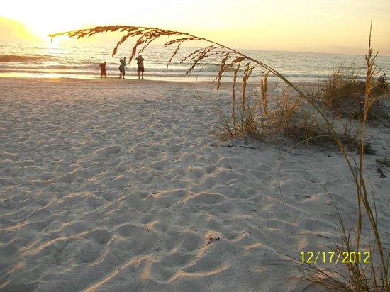 Smuggler's Cove Resort : Beautiful views on the beach!