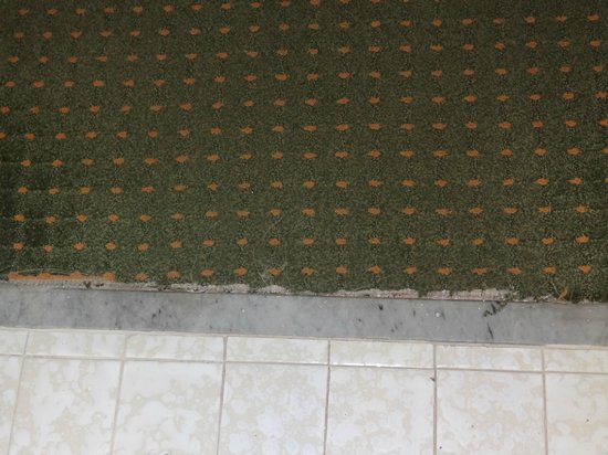 Regency Hotel Miami: Worn carpet in bathroom doorway