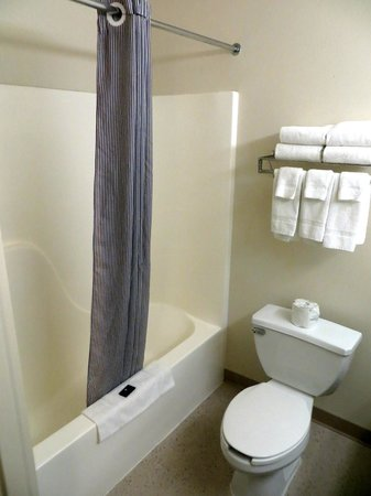 Extended Stay America - Great Falls - Missouri River: Bathroom