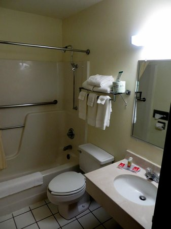 Econo Lodge East: Bathroom