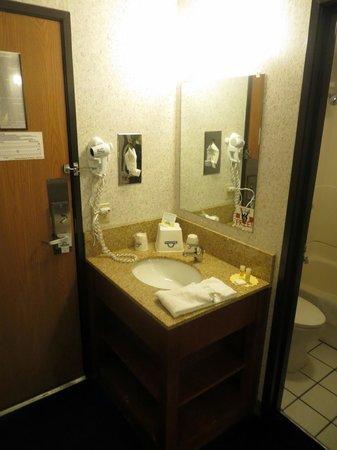 Motel 6 Elk Grove Village: Bathroom