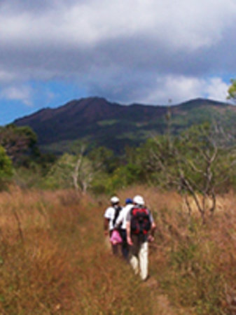 Pinolero Tours Day Tours: on the way to cosiguina crater