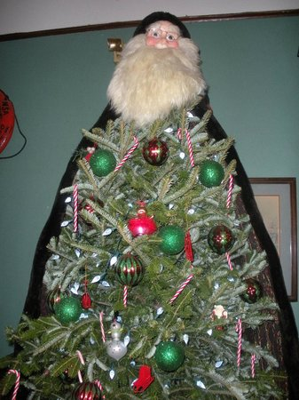 Dry Dock Cafe: That coat covered the whole side and back of the tree