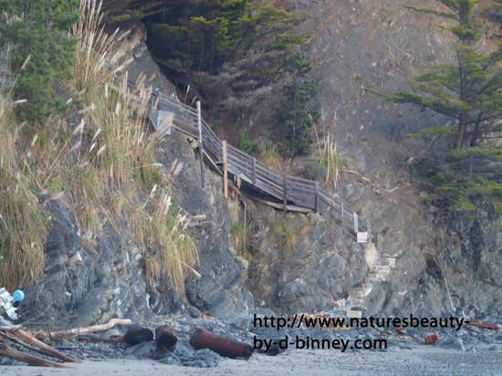 Whale Watch Inn by the Sea: stairway to beach