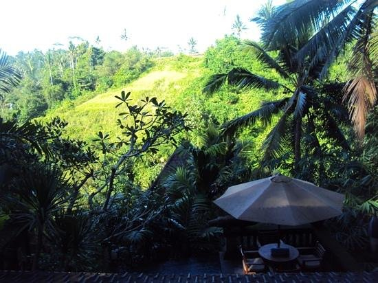 Bidadari Private Villas & Retreat: Blick vom Obergeschoss Villa 4
