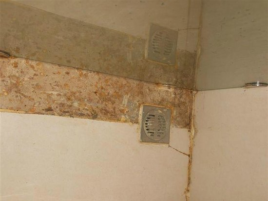 The Regent Cha Am Beach Resort: Disgusting bathroom floor - superior room 2520