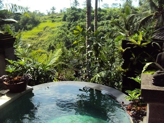 Bidadari Private Villas & Retreat - Ubud: Pool Villa 5