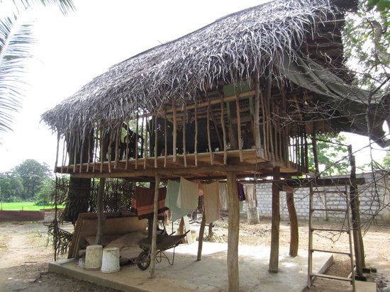 Lakmini Lodge: the tree house