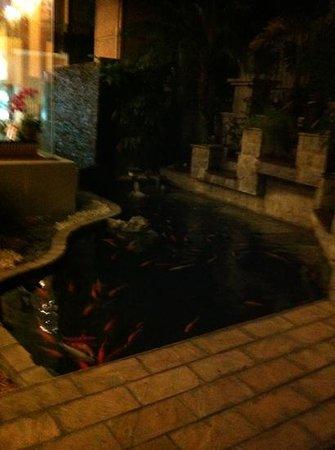 Hualien Charming City Hotel: fish pond