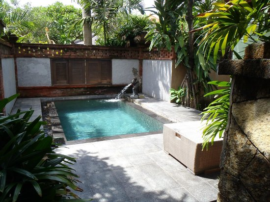 Rama Beach Resort And Villas Plunge Pool In The Villa Suite