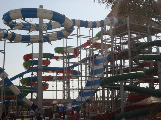 Aqua Park Qatar: Blue & Multi-color (Extra fees)