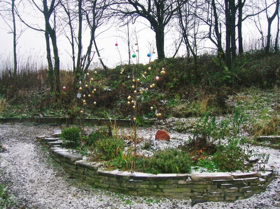 Beith, UK: The Vale Grove in Barrmill Park - Christmas