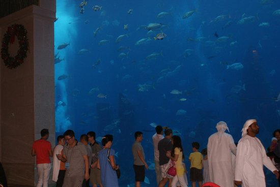 Atlantis, The Palm: Entry to Aqua venture