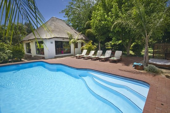De Old Drift Guest Farm : Swimming Pool and Lapa