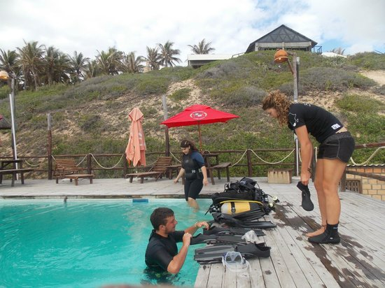 Jeff's Palm Resort: Preparing for first dive
