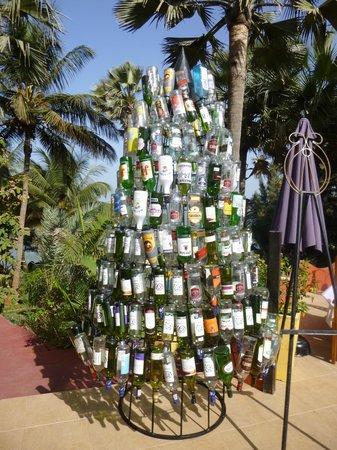 Ngala Lodge : Bottle tree in restaurant