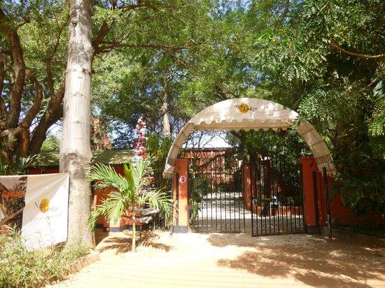 Ngala Lodge: Entrance