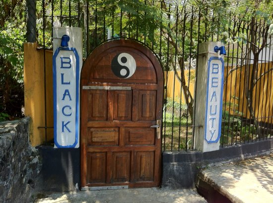 Black Beauty Guesthouse: Gate