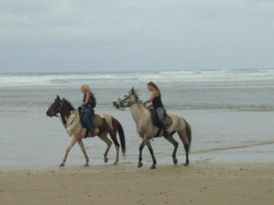 Kob Inn Beach Resort : Horseriding along the beacx
