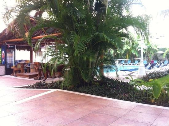 Carmen Inn: Lo splendido giardino interno con piscina