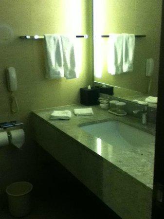 ฮิลตัน คย็องจู: Bathroom