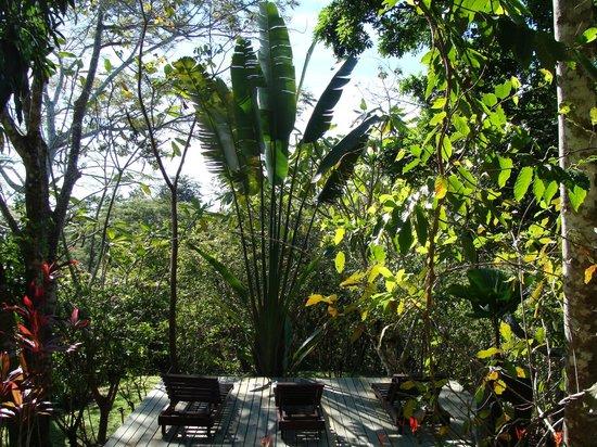 Nature Lodge Finca los Caballos: Entspannung und Natur