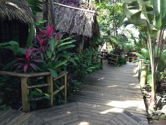 Tranquilseas Eco Lodge and Dive Center: The cabanas