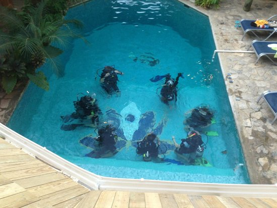 Tranquilseas Eco Lodge and Dive Center: scuba school