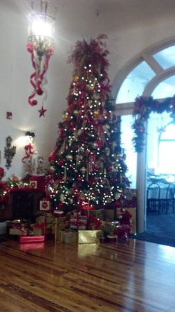The Hotel Jacaranda : Christmas Tree in Hotel Lobby