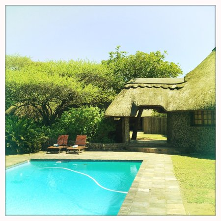 Rhino River Lodge: pool area