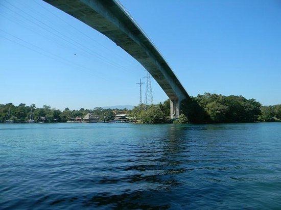 Hotel Backpackers : Amazing bridge spanning the Rio Dulce River