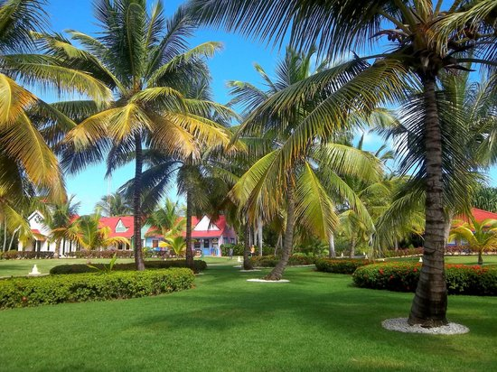 Caribe Club Princess Beach Resort & Spa: en face de la réception