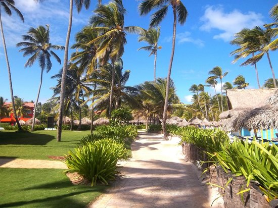 Caribe Club Princess Beach Resort & Spa: chemin entre les piscines et la plage