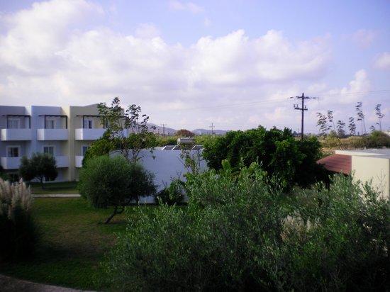 Ξενοδοχείο Zorbas Beach: room veiw