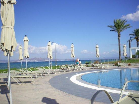 Zorbas Beach Hotel: adultpool