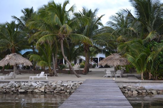 Cocotal Inn & Cabanas: Looking at the resort from the pier
