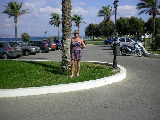 Zorbas Beach Hotel照片
