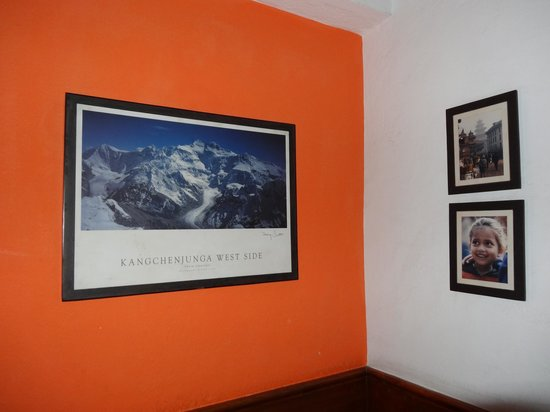 Kathmandu Guest House: Pictures on the wall on the staircase