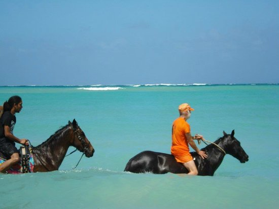 riding Kalakunjen in the gorgeous Indian Ocean at Being with Horses in Buccoo, Tobago