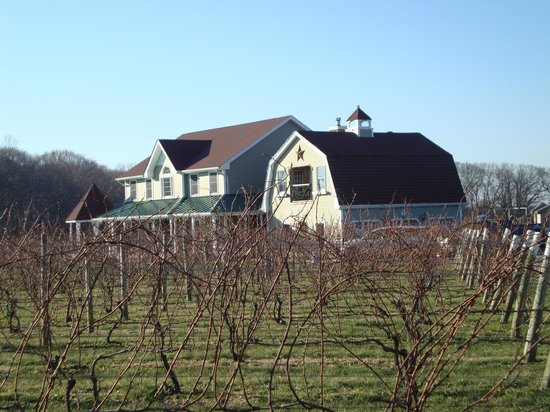 Sannino Vineyard B and B 2