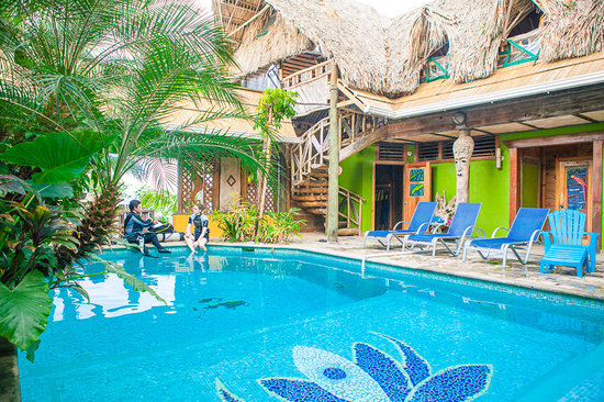 Tranquilseas Eco Lodge and Dive Center: Learning to Dive in the Lotus pool