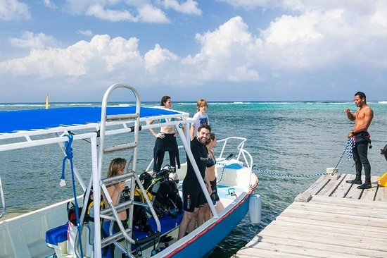 Tranquilseas Eco Lodge and Dive Center: Isoke dive boat