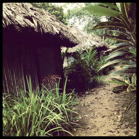 Clarissa Falls Resort: our hut