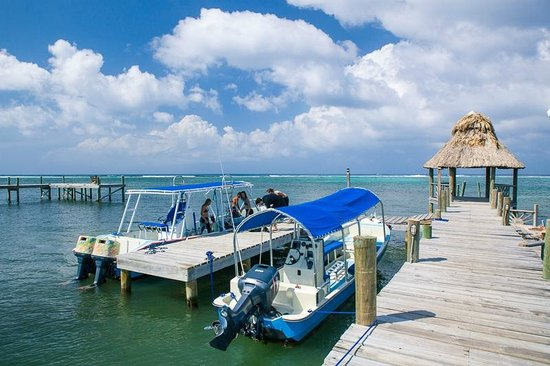 Tranquilseas Eco Lodge and Dive Center: at the dock