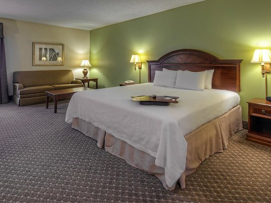 Hampton Inn Kingsport: King guest room
