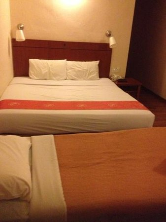 Hotel Puri: std room plus 1 roller bed extra @$50