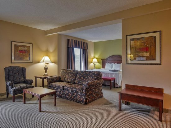 Hampton Inn Kingsport: King Junior Suite living area