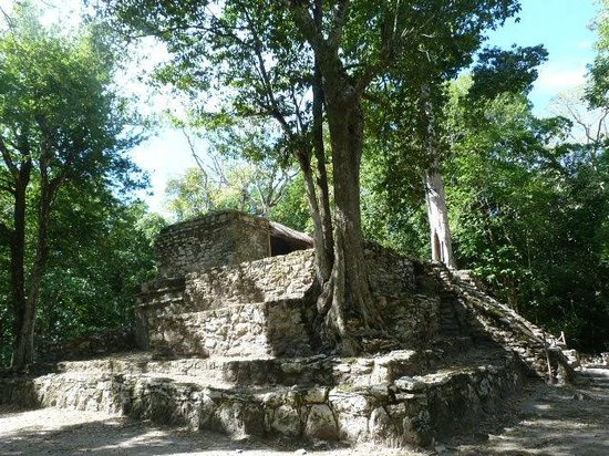 Manzano's Expeditions : Mayan ruin on biosphere sight